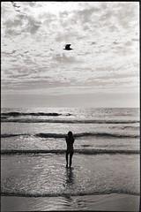 The kid and the bird (Erwan Bela) Tags: nikon fa apx100 d7611 35mm 135 expired périmée 2004 kids beach bird