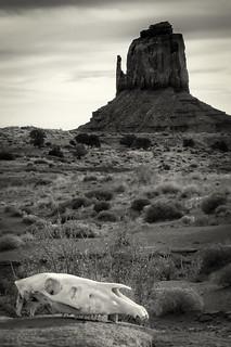 The Left Mitten, Monument Valley, AZ