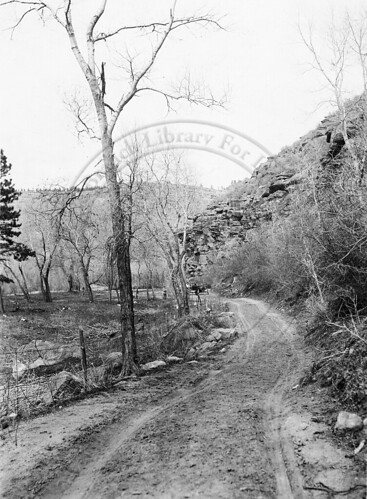 Photo - Overview of Flagstaff Road (c. 1920).