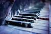 Closer. The last waltz. (Gudzwi) Tags: piano klavier flügel abandoned closeup macroorcloseup 7dwf 7dwfwednesdaysmacroorcloseup gruselig creepy scary tasten pianokeys klaviertasten musik music musicalinstrument musikinstrument beelitz beelitzheilstätten bokeh happybokehwednesday hbw schaurig gespentisch verlassen verlasseneorte lostplaces farbspritzer splashes coloursplashes unheimlich urbex decay verfall