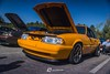 Foxtoberfest 2017 (LUEcreative) Tags: foxbody mustang mercury zephyr marquis ford fordperformance car photography automotive cars mustangweek mustangcobra mustangfanclub