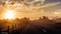 Driving Off Into the Sunset (John Piekos) Tags: goldenhour d750 nikon atlanticave goldenlight edgartown fall derby surfcasting fishing sunrays road sunset 2470mm pavement marthasvineyardstripedbassandbluefishderby marthasvineyard