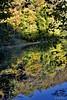 Himmel im Weiher (leaving-the-moon) Tags: 2017 201710 autumn forest goodlight herbst kraichgau natur nature season wald wood