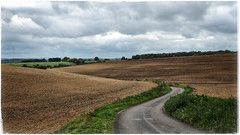 The Long And Winding Road (AppleTV.1488) Tags: chiltonfoliat europe froxfield gbr greatbritain littlecote uk unitedkingdom hungerford wiltshire england littlecoteroad gb appletv1488 2017 october 14102017 14oct2017 14 appleiphone8plus iphone8plusbackdualcamera66mmf28 57mmfocallength35mm pm noflash landscapeapectratio f28 ¹⁄₃₁₀secatf28