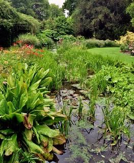 Jardin japonais, parc de Wilton House (XVIIe-XIXe), Wiltshire, Angleterre, Royaume-Uni.