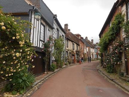 **(海外の村・世界の村を訪問できるオプショナルツアー)