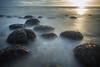 Pond Life (dezzouk) Tags: bowlingballbeach pacificocean california gualala pointarena schoonergulch