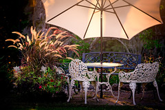 waiting for wine (JimfromCanada) Tags: summer evening afternoon grass plumes chairs table cosy pretty light sunny warm empty nobody romantic peaceful alone date flowers idyllic