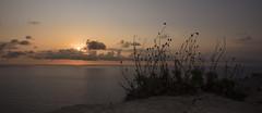 Sunrise island (walter.fangio) Tags: isola alba formentera mediterraneo mare nuvole sunrise