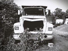 The Silent Forgotten~ (K.Chris ~AlwaYs LeaRning~) Tags: abandoned yard lot old blackandwhite bw bnw truck vehicle contrast rust rusted ruin