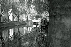 bike@Kö, Düsseldorf 9 (Amselchen) Tags: bicycle kö düsseldorf germany moat water reflection light lightandshadow shadow bokeh blur dof depthoffield fujifilm fujifilmxseries fujinon xt2 fujifilmxt2 xf35mmf14r