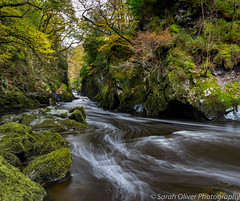 Magical Fairy Glen Gorge (sarahOphoto) Tags: 2017 6d betswycoed canon deep exposure fairy glen gorge green kingdom long magical moss nature october rocks slow snowdonia uk united wales water waterfall brogarmon unitedkingdom gb ffos river conwy noddun shutter landscape
