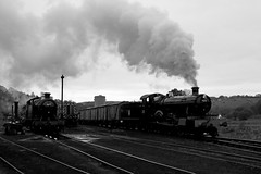 Cheddleton - CVR (Andrew Edkins) Tags: 7820 dinmoremanor manorclass greatwestern gwr cheddleton 4277 42xxclass churnetvalleyrailway blackandwhite 30742charter staffordshire england uksteam class08 railwayphotography freighttrain geotagged canon