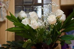 Roses for a Birtday! (ineedathis, Everyday I get up, it's a great day!) Tags: dedication birthday giftformywife anniversary roses babybreaths stilllife bouquet vase flower whiteroses nikond750 love nature autumn dimitra