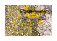 Falmouth Quayside (Steve-T201) Tags: falmouth quay cornwall metal stone lichen