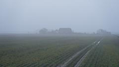 Farm in Fog; Bauernhof im Morgennebel (16:9)