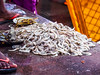 Shrimp! (debra booth) Tags: 2017 grandbazaar india pondicherry pudicherry puducherry copyrighted wwwdebraboothcom