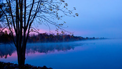 'Mist'erious reflections at Sunrise (Bob's Digital Eye) Tags: bobsdigitaleye canon efs24mmf28stm flicker flickr h2o lake lakescape lakeshore mist reflections sunrise t3i water ☯laquintaessenza☯ landscape sky tree serene