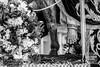 Borriquita Almuñécar Jose Luis Martín (Guion Cofrade) Tags: fe cofradia cofrade devoción santa semana señor pasión pasion jesús besapiés costalero cristo arte procesión nazareno andalucia