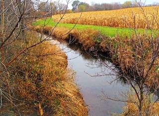 Butterfield Creek, Autumn