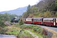 143 (R~P~M) Tags: train railway steam locomotive garatt welshhighlandrailway gwynedd cymru wales uk unitedkingdom greatbritain narrowgauge brynyfelin