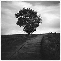 On the Field (Thomas Listl) Tags: thomaslistl blackandwhite noiretblanc biancoenegro tree nature mood landscape field sky clouds people silhouette road path square dark