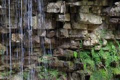 Jigsaw Rocks (clarke_ag) Tags: canada day escarpement hiltonfalls limestone moss ontario waterfall autumn fall fern forest rocks walk water