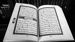Quran1 BW (Little Boffin (PeterEdin)) Tags: sony a6000 alpha alpha6000 sonyalpha sonyalpha6000 sonyalphaa6000 sonya6000 ilce6000 sonyilce6000 religiousbuilding worship placesofworship mosque muslim edinburghmosque edinburghcentralmosque potterrow kingfahdmosque kingfahdmosqueandislamiccentreofedinburgh religion faith god belief prayer islam allah quran koran islamicfaith arabic discoverislam discoverislamfestival edinburghfestival arabictext arabicwriting book books publication publishing reading paper pages text words printing blackandwhite blackandwhitephotography bw blackwhite blackwhitephotography monochrome black white grey