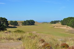 49 (bigeagl29) Tags: pacific dunes golf course bandon resort oregon or coastline beach landscape scenic scenery