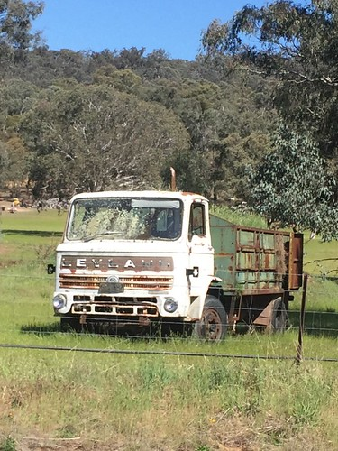 LEYLAND Harrier SWB at Abercrombie, NSW