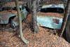 DSC_0567 v2 (collations) Tags: ontario mcleansautowreckers autowreckers wreckers automobiles autos abandoned rockwood derelict junkyards autograveyards carcemeteries
