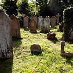 Cemetery thumbnail