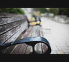 Paletta Mansion Bench (Mark Somerville.) Tags: bench burlington mark somerville 35l dof park cloudy