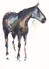Horse Study [20171028] (rodneyvdb) Tags: abstracted animal art contemporary expression expressionism figurative fineart horse horseart horseriding impressionism modernart painting sketch watercolour