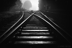 tracks (mschroeder_36x24) Tags: bw blackandwhite schwarzweis schienen railroad