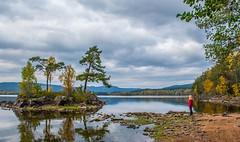 Lakeside Scenery (bjorbrei) Tags: shore trees maridalen maridalsvannet oslo norway islet
