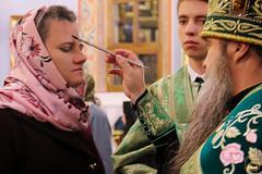 Преподобного Сергия (16)