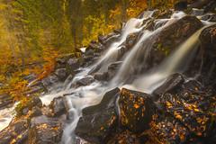 When Autumn Comes (Jyrki Salmi) Tags: jyrki salmi korkeakoski maaninka kuopio finland autumn rocks rapids orange leaves water