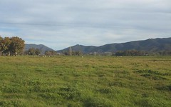 Lot 1 Tumut Plains Road, Tumut NSW