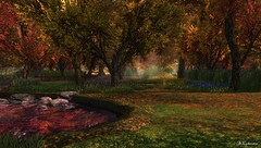 Angel's Fall (Sparkie Cyberstar) Tags: raw untouched angelmanor secondlife sl secondlfe fall foliage autumn trees pond flowers virtualworld
