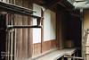 CAT-20170906-092747 (thinkcat) Tags: mitoshi ibarakiken 日本 jp