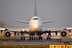 Lufthansa - Boeing 747-430, D-ABVS (Bernd 2011) Tags: lufthansa boeing 747 747430 dabvs nose sunset noseshot fra eddf 744