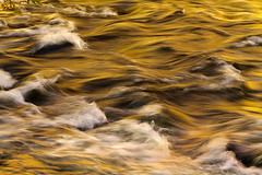 Liquid Gold (arbyreed) Tags: arbyreed water river stream provoriver provocanyon slowshutterspeed motionblur gold yellow utahcountyutah