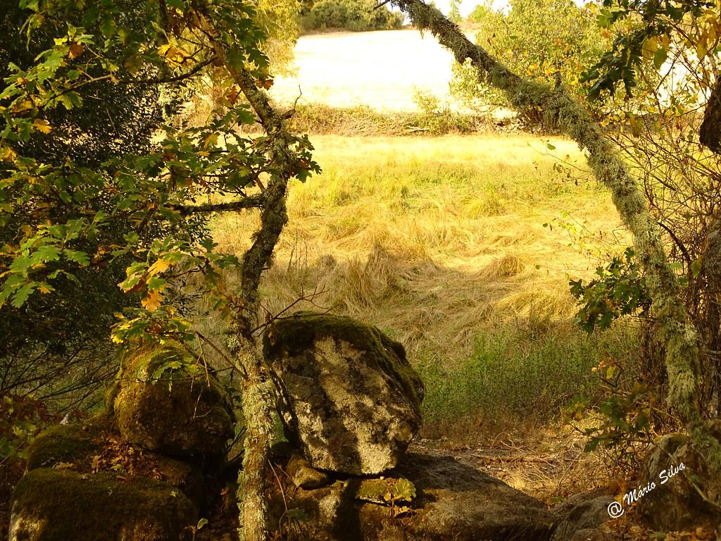 Águas Frias (Chaves) - ... moldura natural para a paisagem ...