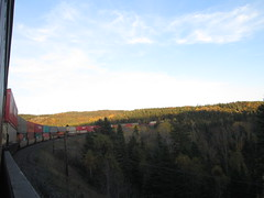(Railroad Rat) Tags: northern ontario province canada wilderness freight train cp rail railroad hopping hoppers jungle trees forest leaves river lake intermodal graffiti moniker yard boxcar