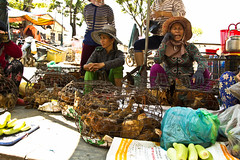 2017_04_09HoiAn25 (Andi [アンデイ]) Tags: vietnam hoian streetphotography street streetview people market travel travelphotography asia southeastasia seasia canon sigma sigmalens sigmaa