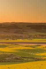Ochil Foothills Sunset (Chris_Hoskins) Tags: wwwexpressionsofscotlandcom fife scotland centralscotland ochils scottishlandscape sunset scottishlandscapephotography landscape