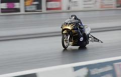 National Finals_6989 (Fast an' Bulbous) Tags: bike biker moto motorcycle fast speed power acceleration motorsport dragbike nikon d7100 gimp santapod drag strip race track