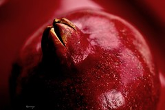 Melograno - sidelit MacroMondays (kiareimages1) Tags: macromondays sidelit macro macrophotographie macrophoto pomegranate melograno grenade granada rosso red rouge images colors