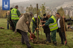 Islamic Relief Bosnia commemorate their 25th anniversary in Oct. 2017. 25 trees were planted on a hillside between a maternity hospital and a cemetery from the war, symbolizing new life and hope for the future.